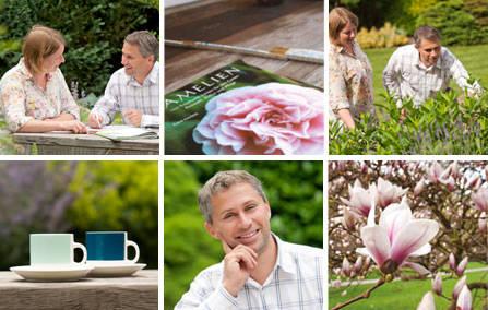 Reihe Profil Gartengestaltung